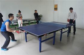 公司5S杯乒乓球比赛圆满落幕
